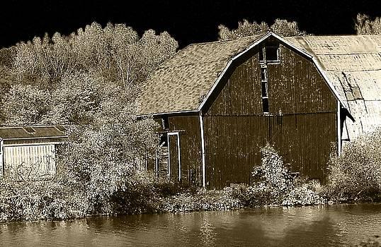 Scott Hovind - Forgotten Farm
