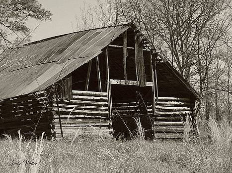Forgotten Hay Barn by Judy  Waller