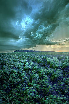 Forgotten Horizon by Phil Koch
