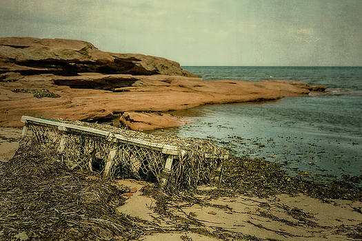 Forgotten Lobster Trap by Chris Bordeleau