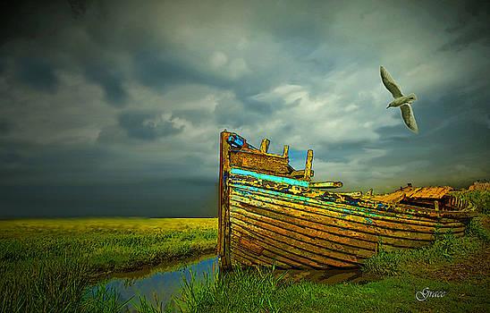 Forgotten Old Boat by Julie Grace