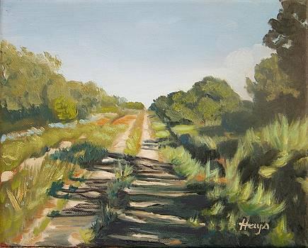 Forgotten Road by Donna Hays