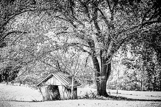 Forgotten Shed by Keith Bowen