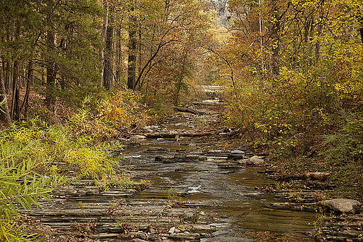 Fork River Ablaze in Color by Katherine Worley