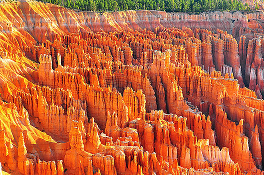 Formations at Bryce Canyon Ampitheater by Jay Mudaliar