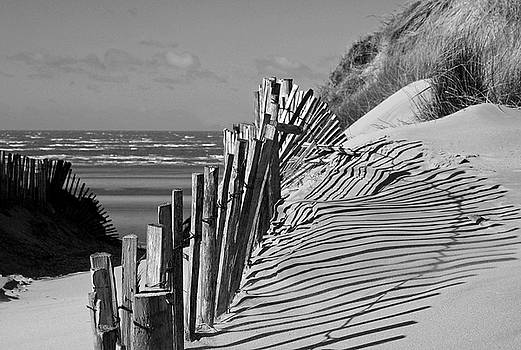 Formby beach shadows by Susan Tinsley