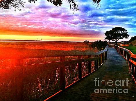 Amy Sorrell - Fort Fisher