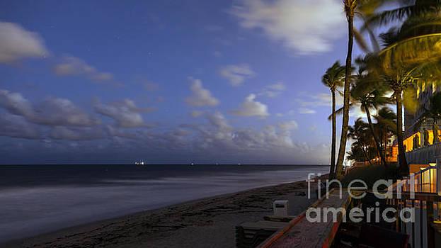 Lynn Palmer - Fort Lauderdale Nights