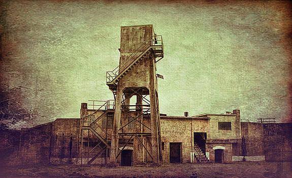 Marilyn Wilson - Watch Tower