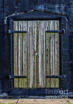 Fort Moultrie SC Battery Jasper Door by Dale Powell