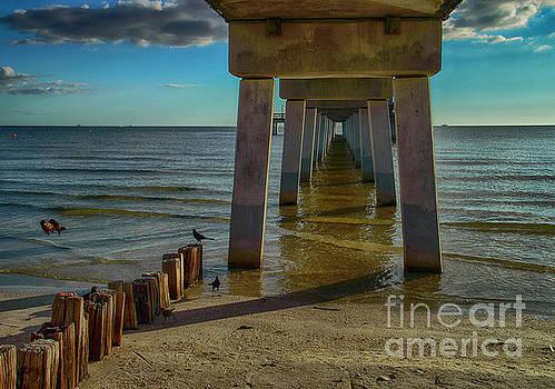 Fort Myers Beach by Judy Hall-Folde