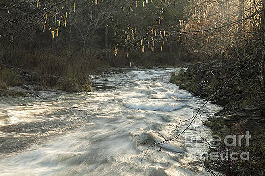 Fort River Early Spring by Iris Greenwell