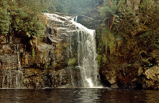 Forth Falls Tasmania by Sarah King