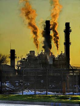 Fossil Fuels by Jeffery Ball