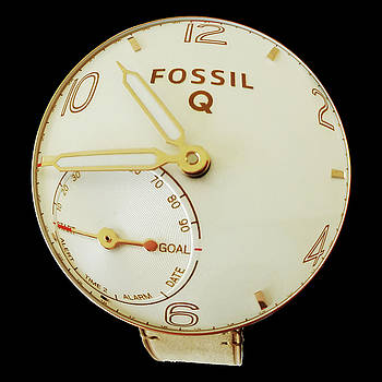 Fossil Q 7 by Bruce Iorio