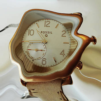 Fossil Q by Bruce Iorio