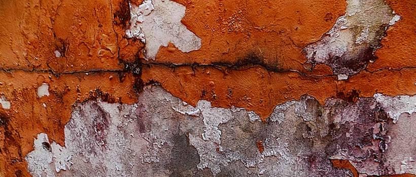 Foto Excavation # 0443 by Jeffrey Morrison