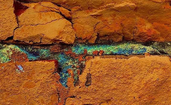 Foto Excavation # 2305 by Jeffrey Morrison