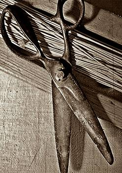 Found Objects - Scissors by Lisa Kaye