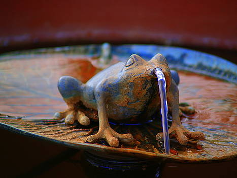 Fountain Frog by Carrie Putz
