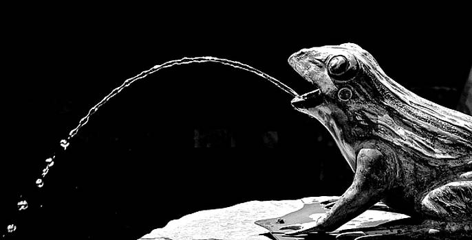 Fountain Frog by Rita Mueller