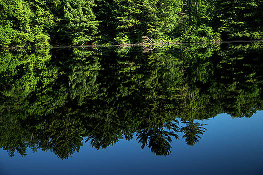Karol Livote - Fountain Lake