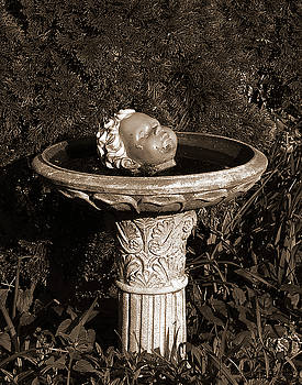 Fountain of Youth by Tom Romeo