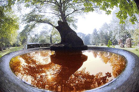 Fountain by Rich Stecher