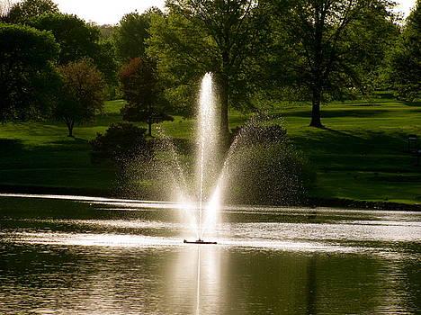 Sherri Williams - Fountain