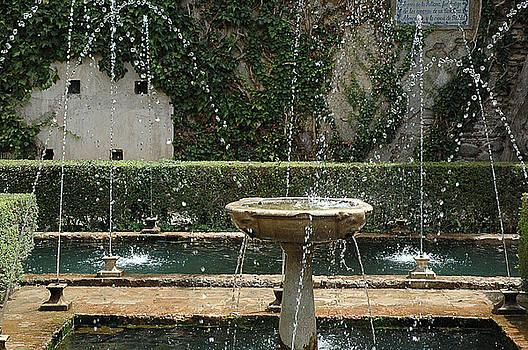 Fountan in the Garden by Al Junco