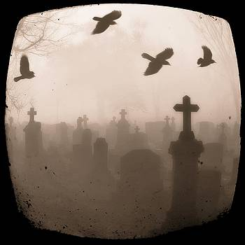 Gothicrow Images - Four Crows Fly Through The Dark And Foggy Cemetery