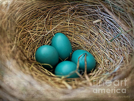 Barbara McMahon - Four Robin Eggs In Nest