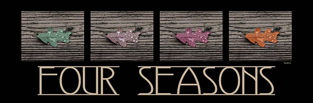 Four Seasons by Brian Pflanz