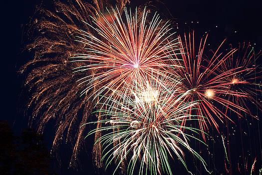 Fourth of July Fireworks by Reni Boisvert
