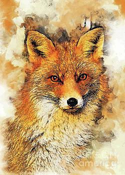 Fox art by Justyna JBJart
