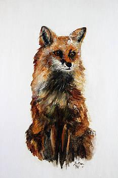 Tokala - Fox by Barbie Batson