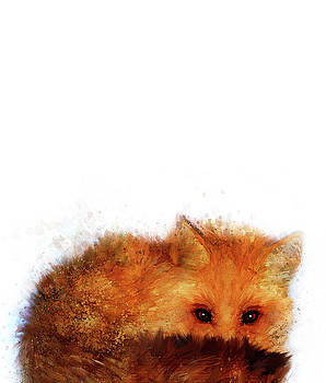 Fox by Christina VanGinkel