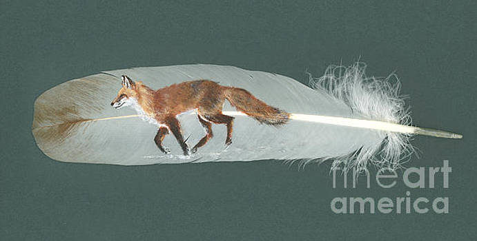 Fox Feather by Brandy Woods