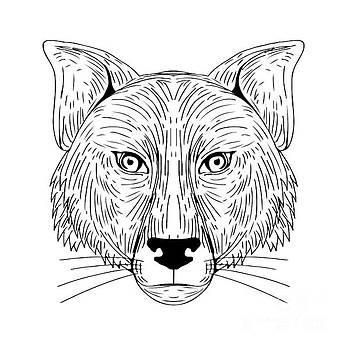 Fox Head Front Drawing by Aloysius Patrimonio