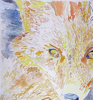 Fox by Lea Cox