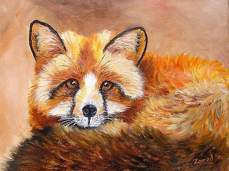 Fox Portrait Wildlife by Mary Jo Zorad