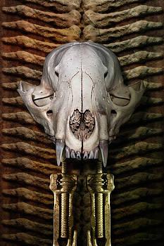 Fox Totem by WB Johnston