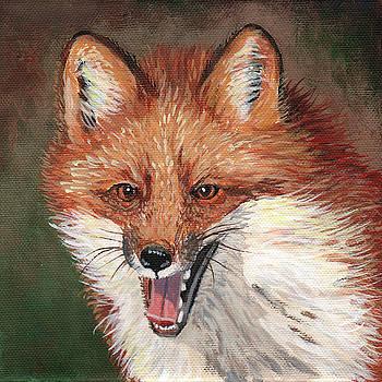 Foxy by Timithy L Gordon