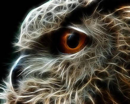 Fractal Eagle Owl by Fenris Oswin