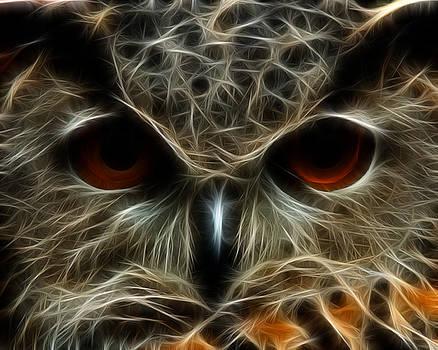 Fractal Eagle Owl - Gaze by Fenris Oswin