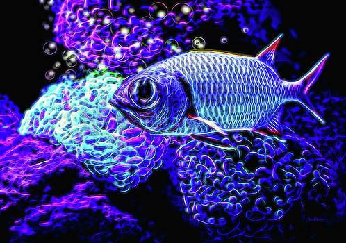 Fractal Fish by Ericamaxine Price