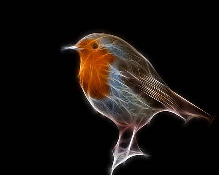 Fractal Xmas Robin by Fenris Oswin