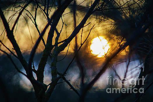 Fractal Sunset at Rio San Pedro Cadiz Spain by Pablo Avanzini