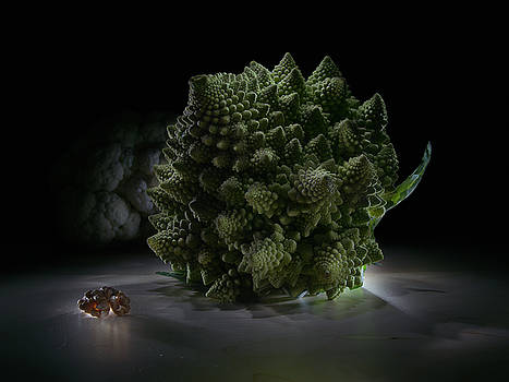 Fractal supper by Alexey Kljatov