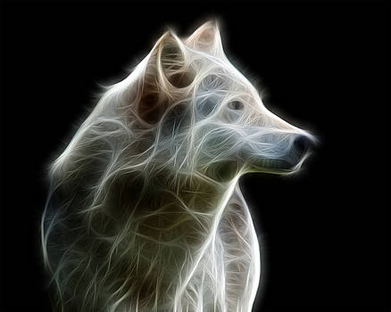 Fractal Timber Wolf by Fenris Oswin